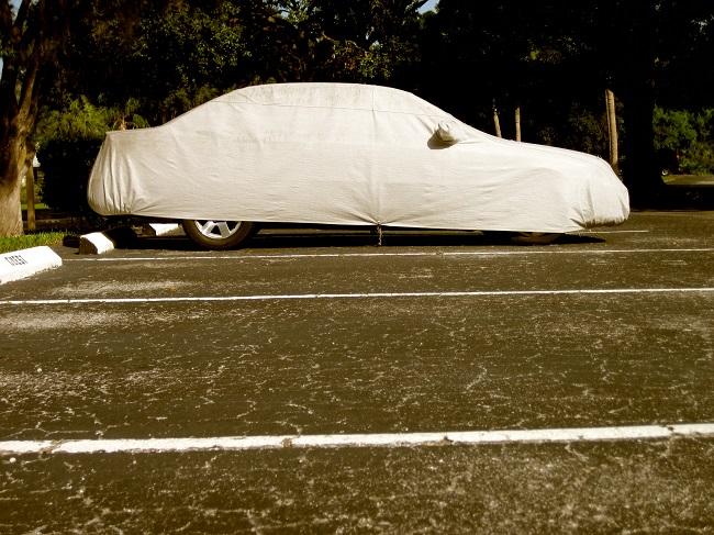Benefits of Long Term Auto Storage Services